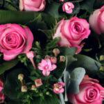 Biedermeijer_rose1