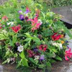 Rouwstuk-Nr.30-arrangement-veldbloemen